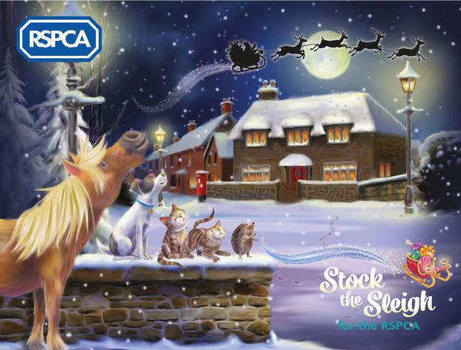 The RSPCA's 'stock the sleigh' campaign