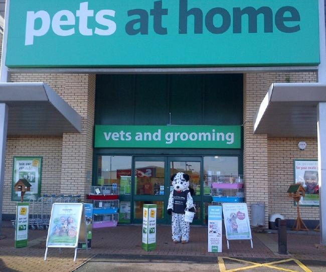 Pets at Home store