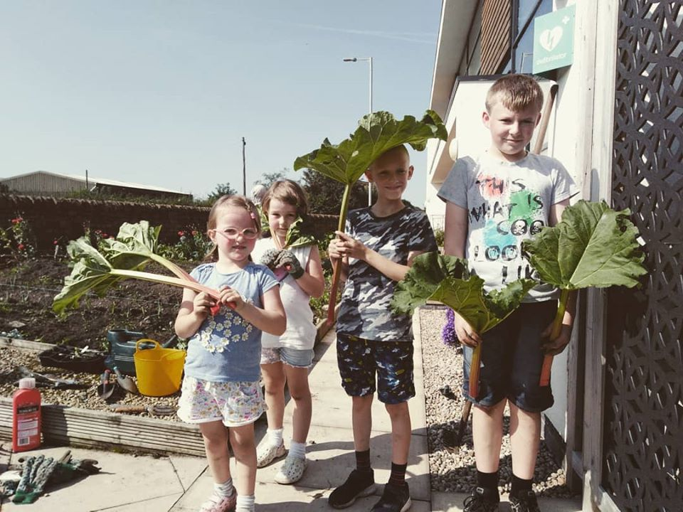 Eco Gardening day for young people