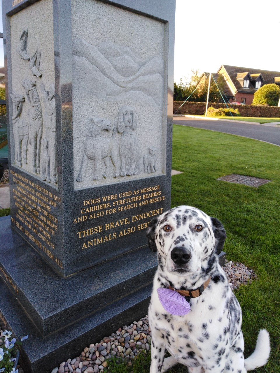Animals in War Memorial Event