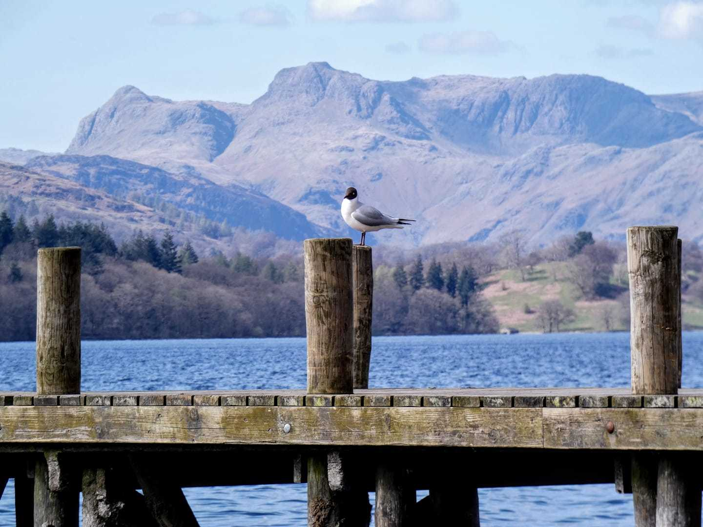 Thanks given as Lakes remains 'largely quiet' over bank holiday weekend