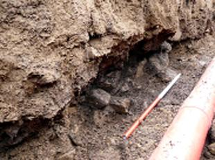 FURTHER SURVEYS: Engineers spotted changes in soil colour while digging trenches for power cables in Kingsdale
