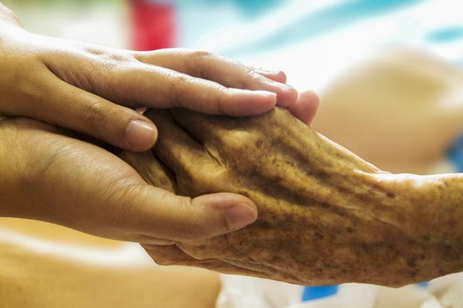Cumbrian care homes are being cared for