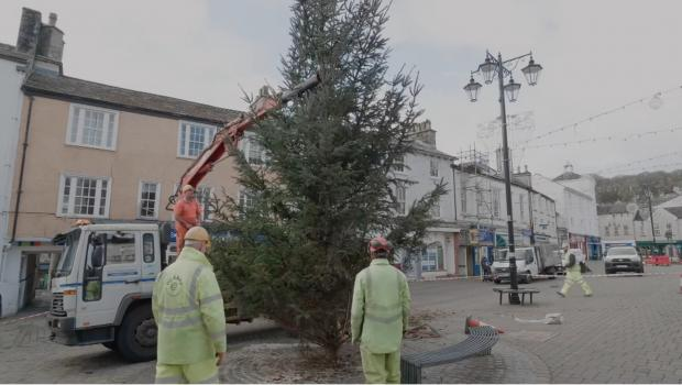 The Westmorland Gazette: POSTIONING: Putting the tree in its place