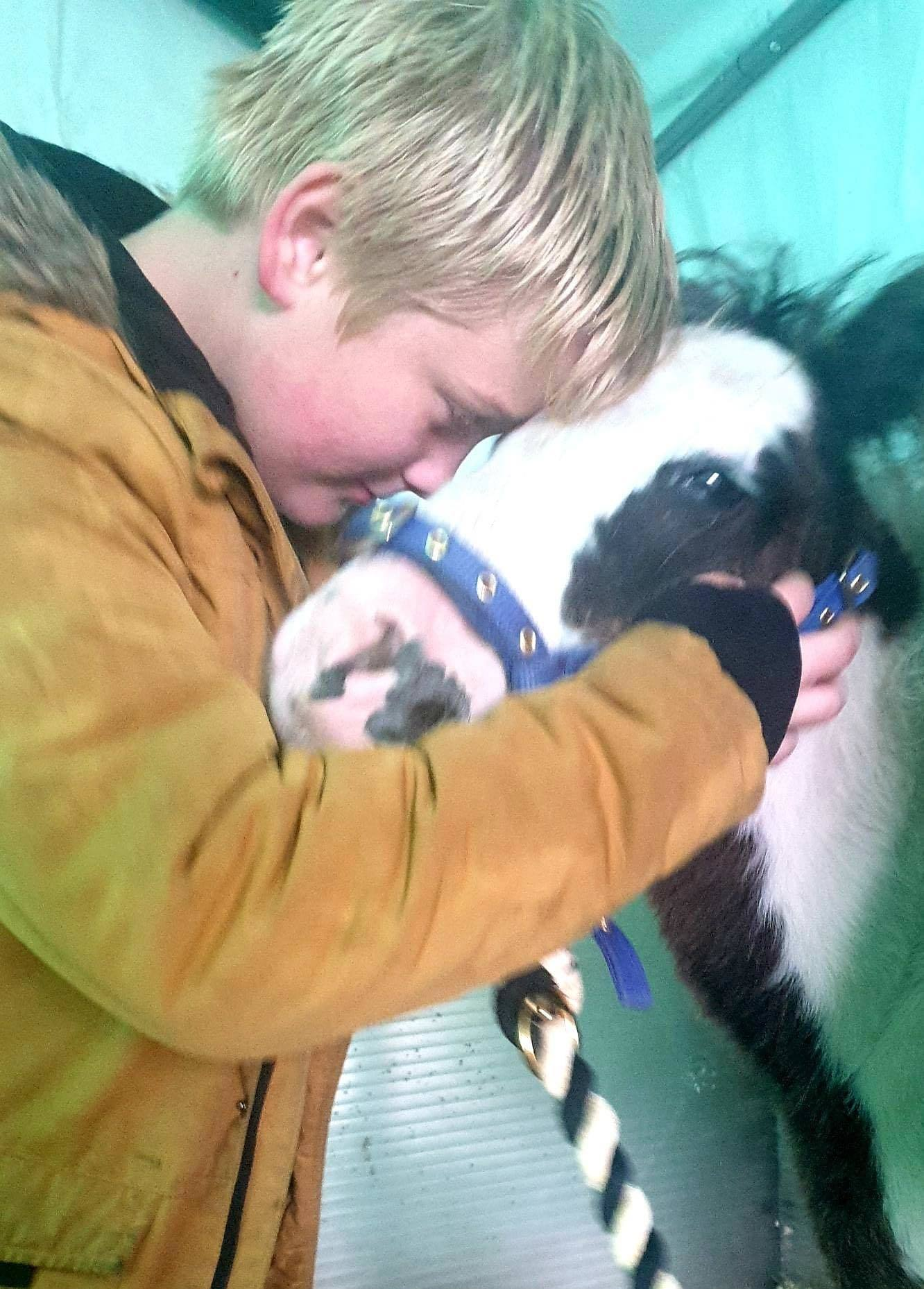 LOST: Shadow pictured with Jacob Owen, who the horse was bought for