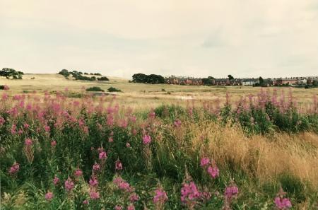 The Westmorland Gazette: Baileys Field