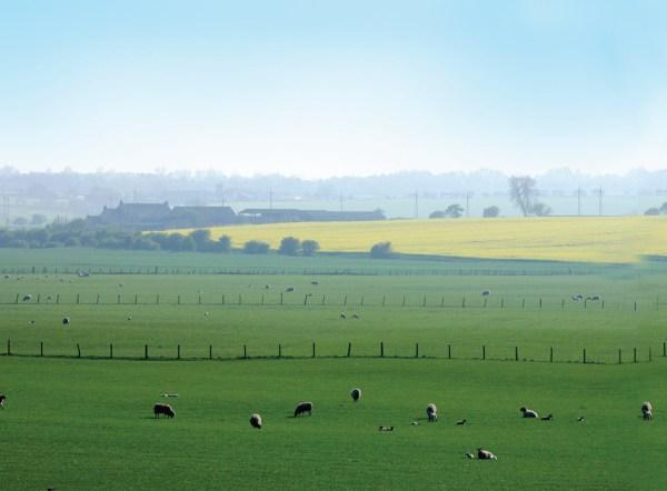 LAND OF PLENTY: Farmland prices up by nearly 15 per cent
