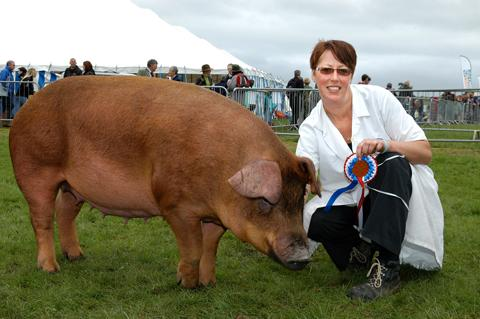 The quality of the livestock at this year's show has been praised