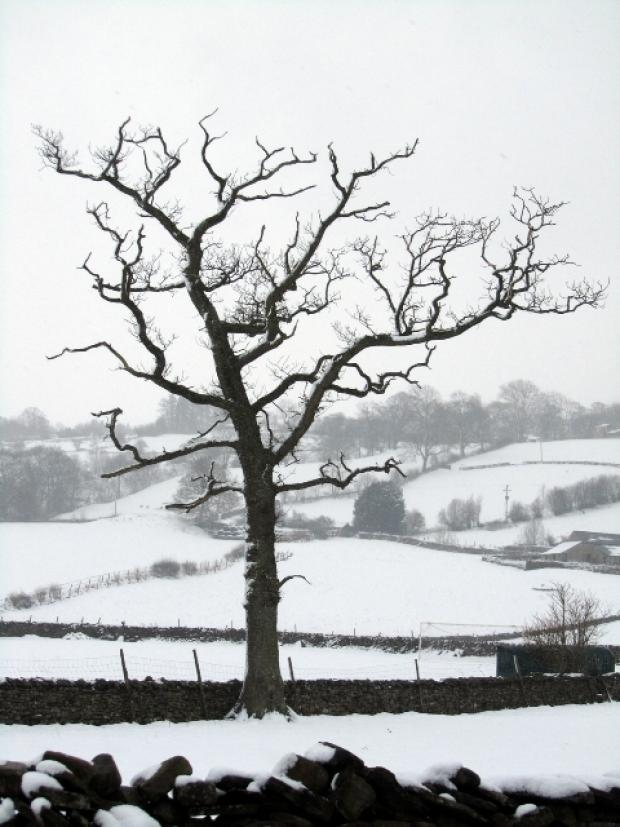The Westmorland Gazette: Snow in Dent this week