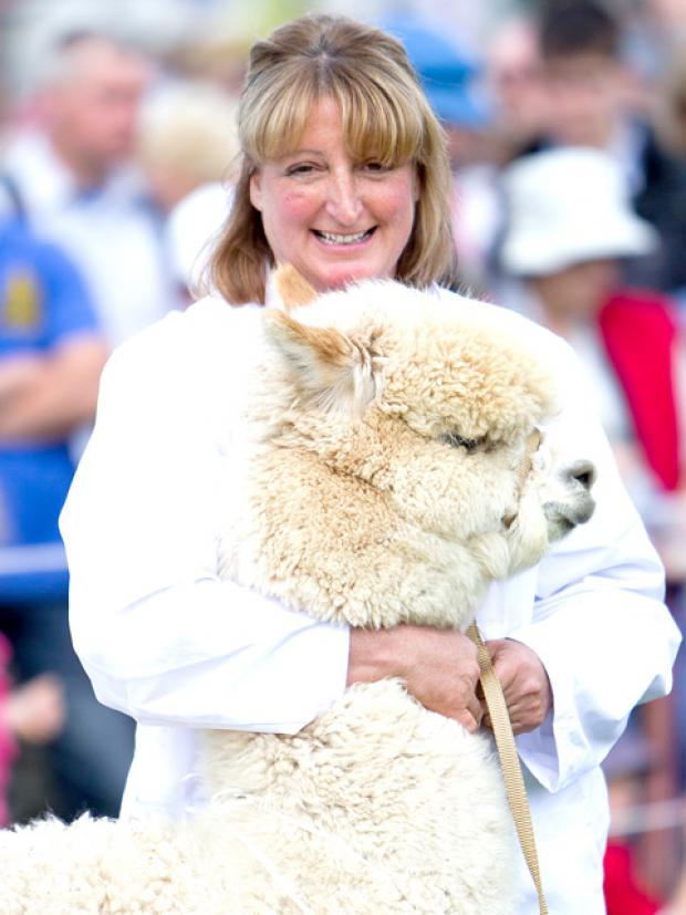 Barbara Hetherington, of Beck Brow Alpacas in the Eden Valley