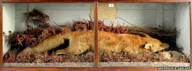Celebrated Grayrigg Fox withdrawn from auction after dispute over ownership