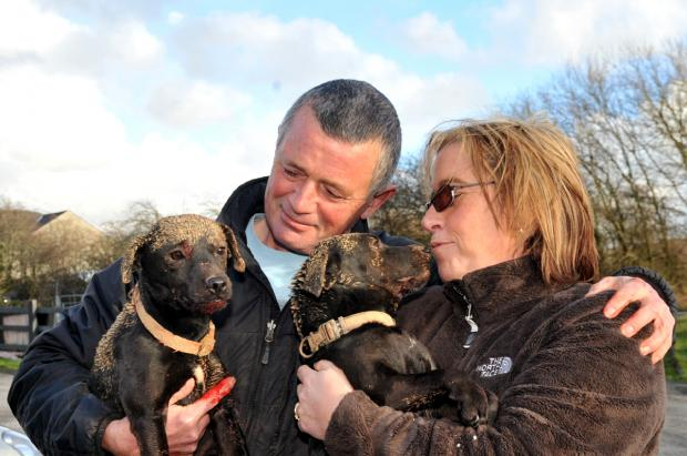 The Westmorland Gazette: Michael and Yvonne Sunderland moments after being reunited with lost pets Molly and Jess – Molly, left, had suffered an injury to her throat