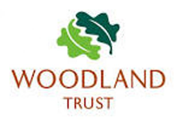 Woodland Trust issues fly tipping plea