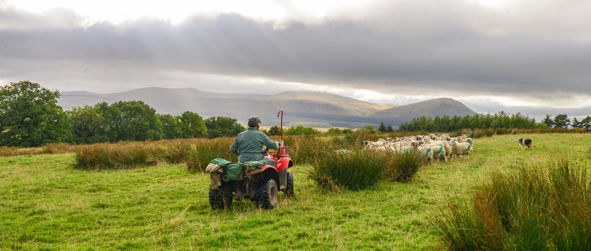 Eden to host national uplands management conference