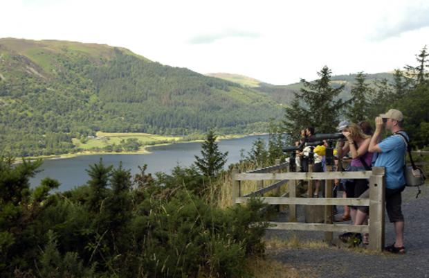 Birdwatchers at Bassenthwaite