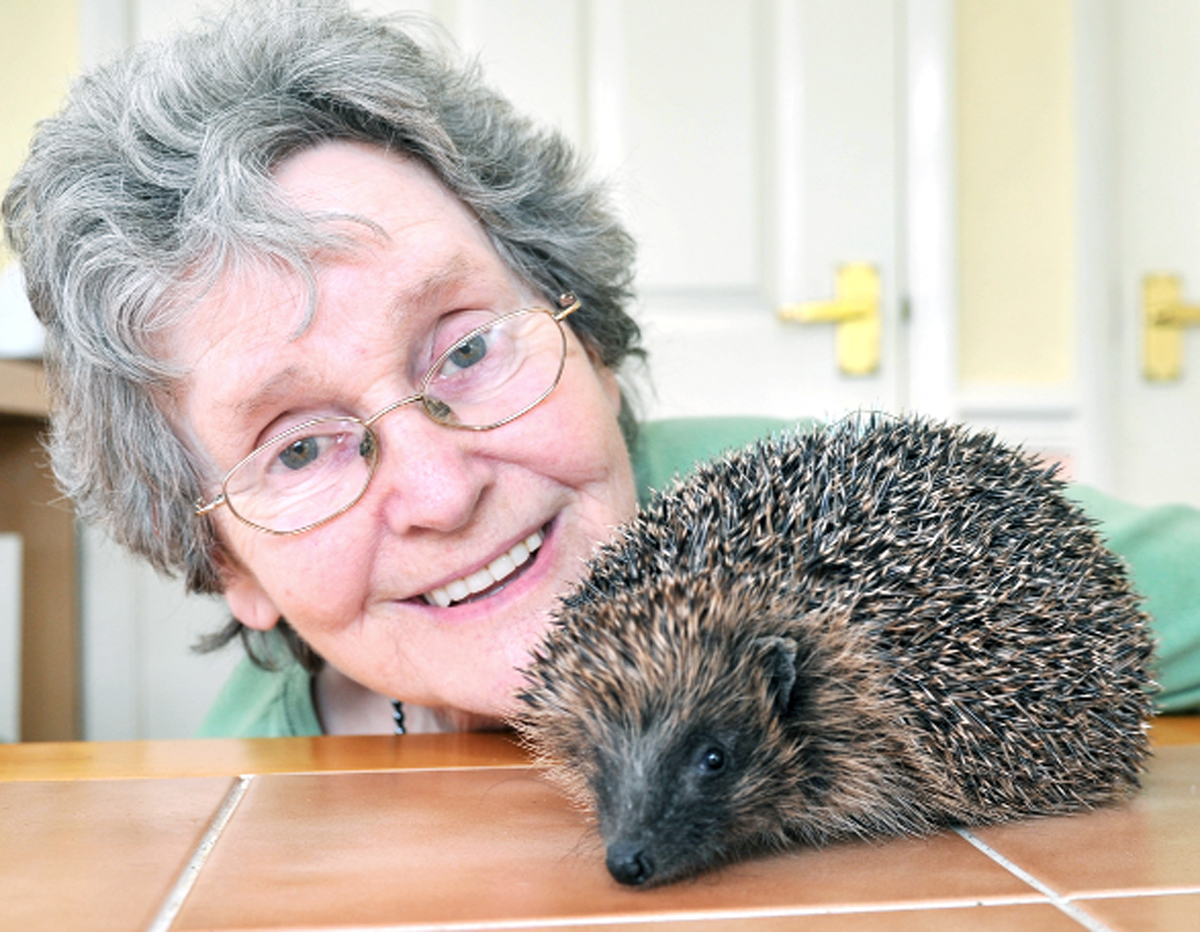 Irene Cannon with one of her spiky friends