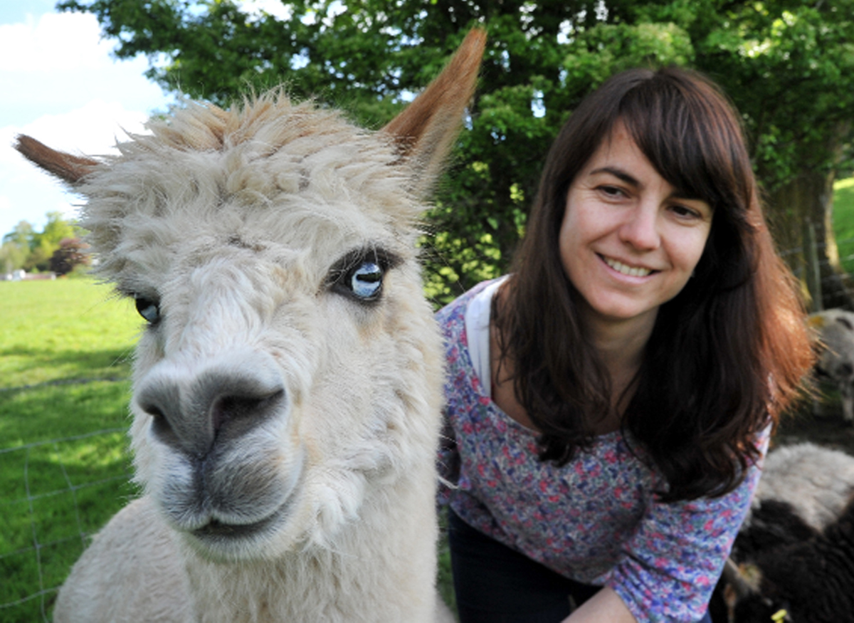Shayla Garrido with one of the alpacas who look after the sheep at Bank Ground Farm