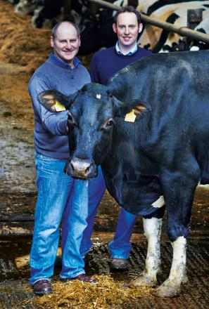 WELCOME MOO-VE: Roger and Gary Mason at their Levens farm
