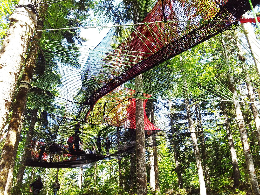 Another fine mesh: UK's first ever tree top net course to open in the Lakes