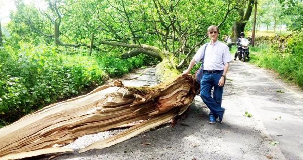 Lewis Walch with the fallen tree...