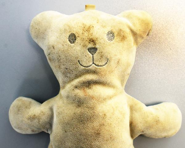 The lost teddy bear