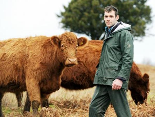Alec Smith with his Luing cattle