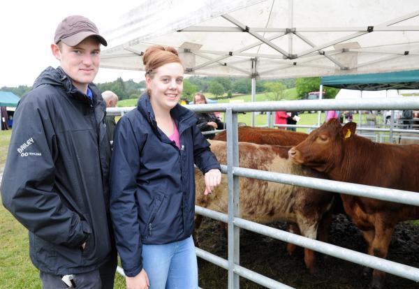 GREAT MOO-VE: Visitors James Park and Leanne Wallace check out the Luings at Winster