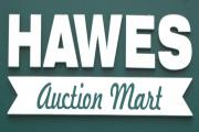 Leading farm prices from Hawes Auction Mart