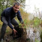 The Westmorland Gazette: RIVERS: Mike Sturt of South Cumbria Rivers Trust is in charge of a new project project to tackle the causes of excess sediment and nutrient in Esthwaite Water and improve fish habitat in Cunsey Beck. Pictured is Mike demontrating reed bed restoration at L