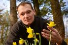 Shane Pease with the early Tebay daffodils