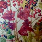 The Westmorland Gazette: Wild Flowers of Britain: Month by Month by Margaret Erskine Wilson