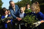 Pupils of Heron Hill and Stramongate Schools in Kendal helping with the town's Pollinators project, by planting various wild flower  along the canal towpath...Picture: Heron Hill Primary School pupil Ellie McKnight with one of the wild flower specious