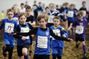 South Lakeland District cross-country junior trials at Sedbergh Preparatory School, Casterton...Pictured: Year 3 and 4 girls race...10/01/2018..JON GRANGER.