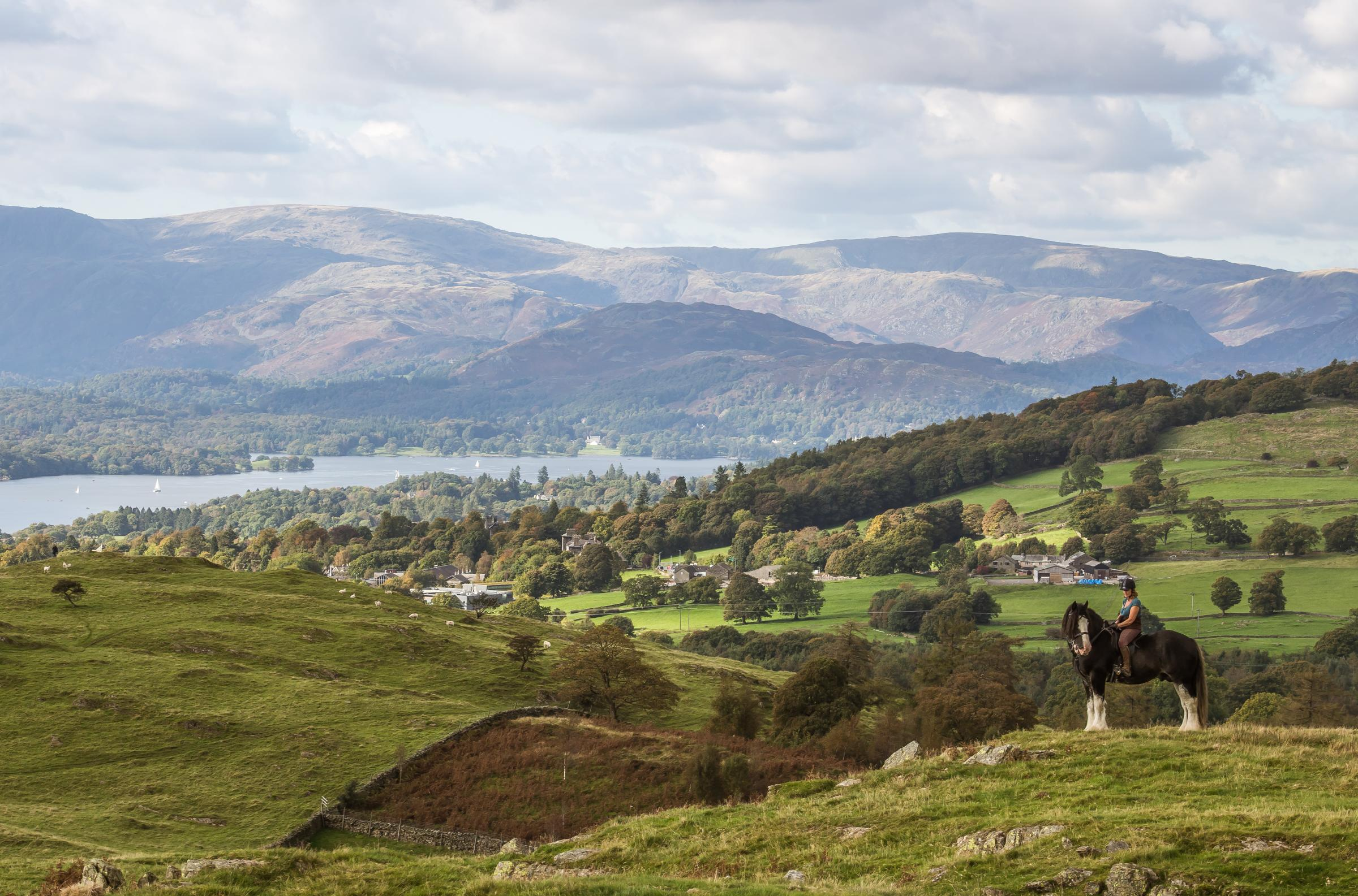 The view overlooking Windermere