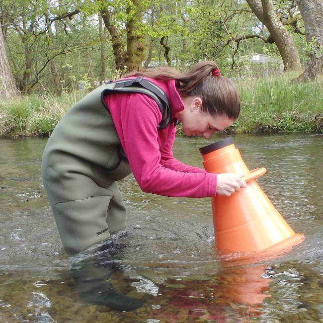Water quality warning for River Eden | The Westmorland Gazette