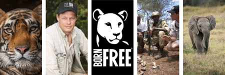 Born Free celebrates 35th birthday in Cumbria