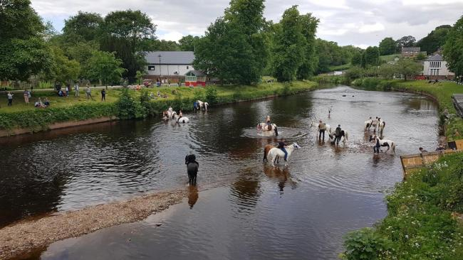 Traditional washing of the horses in the River Eden at Appleby during the annual horse fair